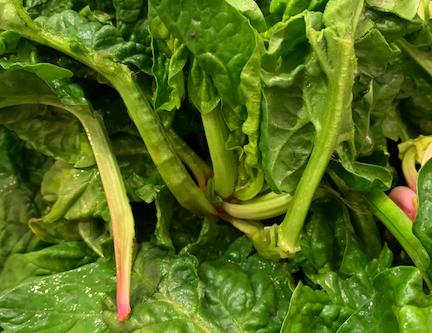 Greenmarket at Home: May