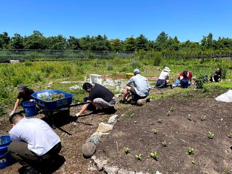 Teaching Garden Update June 25