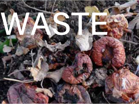 Part 2 -  Food, Waste and Climate Workshop Series