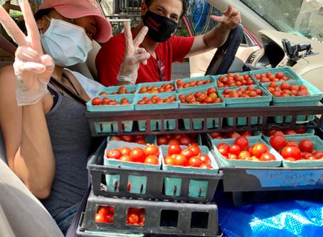Spotlight on GrowNYC Teaching Garden's Donation Partners