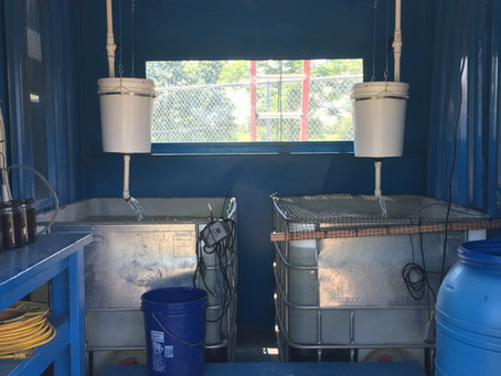Aquaponics in the Teaching Garden