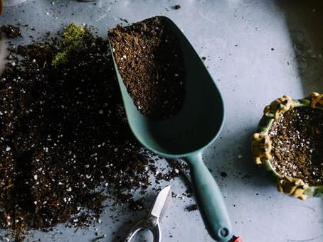 DIY Houseplant Soil