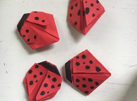 Origami Ladybugs