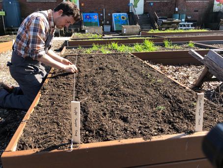 Spring Planting 101