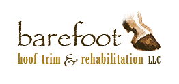 Bare Foot Hoof Logo.png