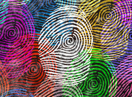 Ciudadanía Digital, responsabilidad compartida