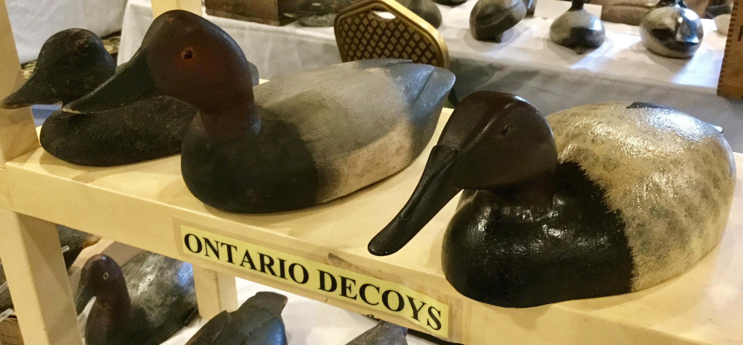 Ontario Decoys