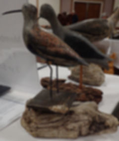 Antique shore bird decoys at the Canadian Decoy & Outdoor Collectible Association annual show and sale.