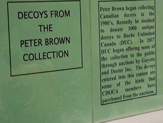 Decoys from the Peter Brown Collection Brochure