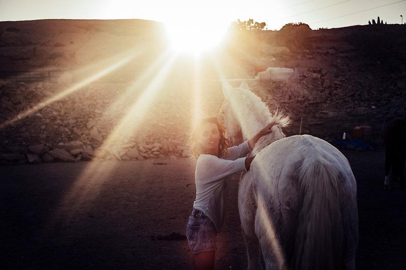 LIDIA- horse:light.jpg
