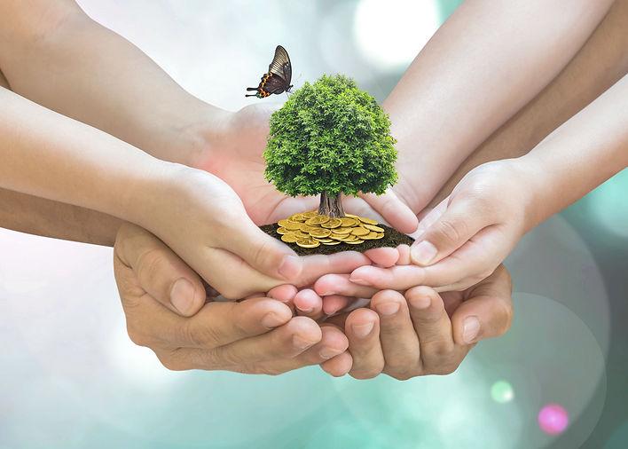 Lidia - TREE PIC.jpg