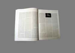 reVista Harvard Review of latin america pagina2