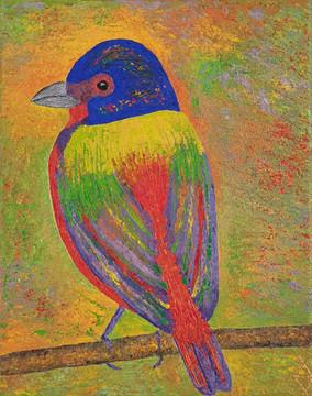 Rainbow Bird, 2020