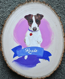 Pet Portrait Freelance Commission