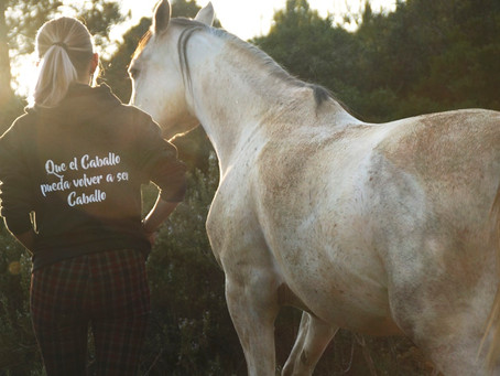 Charla un caballo es un caballo con Sofía E.Ramírez