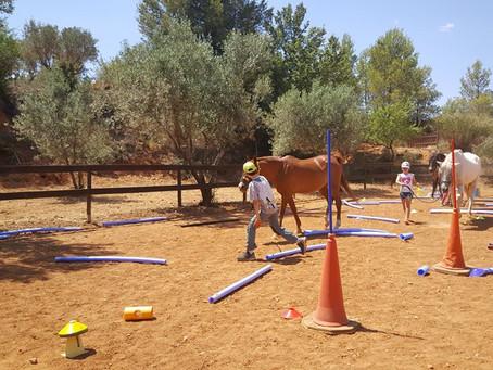 Actividad con caballos para niños