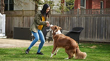 BeYourBest_Dog-Mom-Four_KetteringHealth.jpeg
