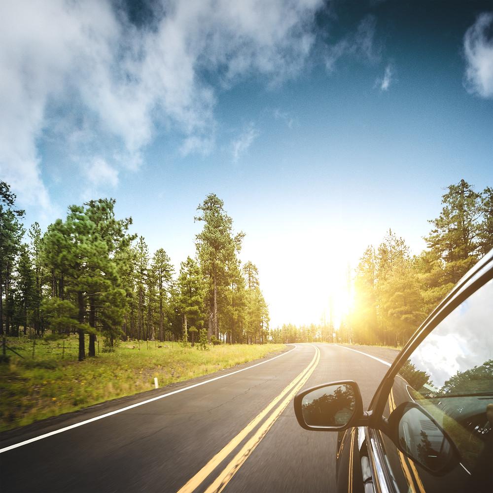 Collector Auto Insurance