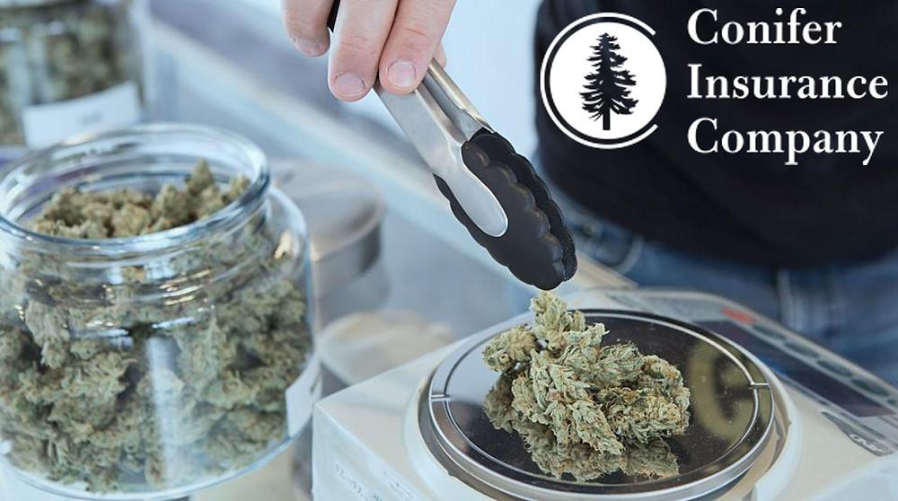 Cannabis Coverage, Cannabis Insurance, Cannabis Insurance Michigan