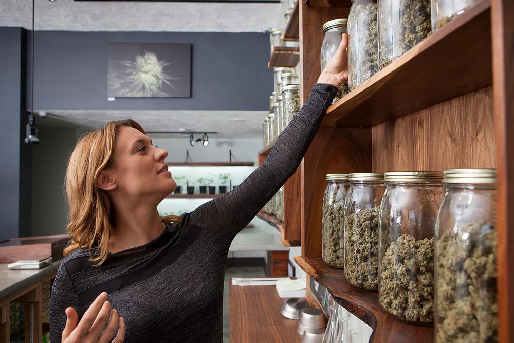 Michigan Cannabis Insurance