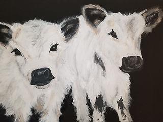 White Calves (1).jpg