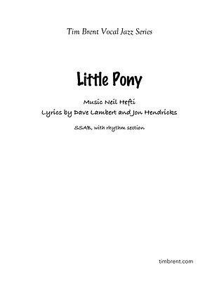 Little Pony (SSAB) Fast Swing
