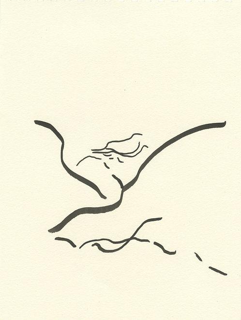 Remy Knopf, Sail