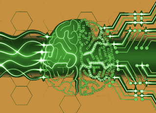 Artificial Intelligence in Corrections