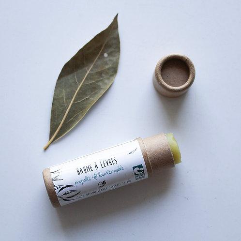 Baume à lèvres - huile de chanvre, propolis & laurier noble - 14ml