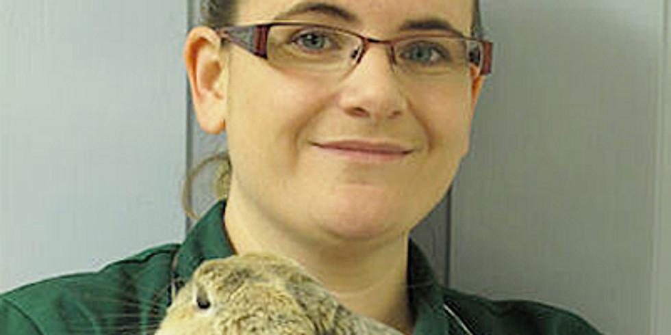 Be a better rabbit nurse