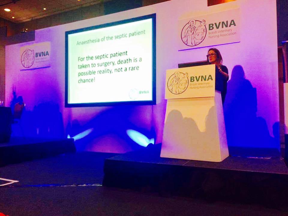 Lecturing at BVNA congress