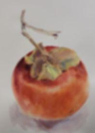 A big persimmon.jpg