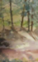 Gully shadow play.jpg