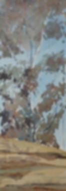 Silurian escarpment.jpg