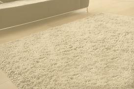 Carpet%20in%20Living%20Room_edited.jpg