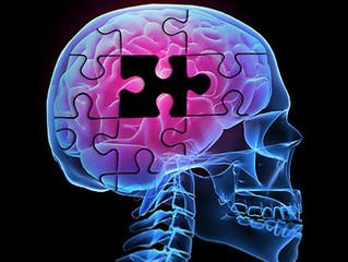 Biological Anthropology Meets Neurology