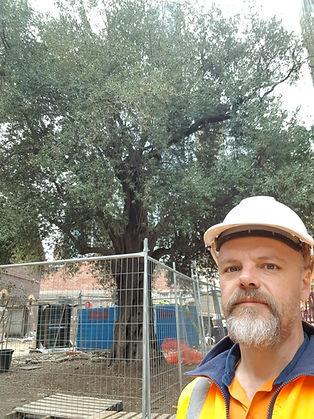 Consulting Arborist, Dan Van Kollenburg, on a construction site in Melbourne.