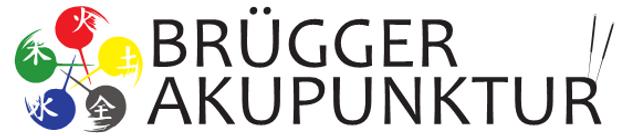 Brügger_Logo.png