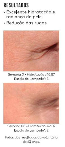 LipoWheat 1 - revista.JPG
