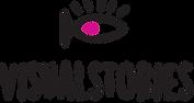 logo visual stories.png