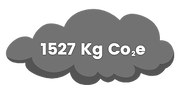 total of carbon offset