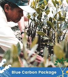 Blue Carbon Package