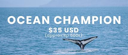 ocean champion patreon package