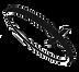 Codex Logo_edited_edited_edited.png