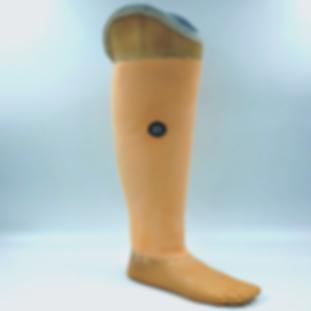 Unterschenkel Prothese SQ.png