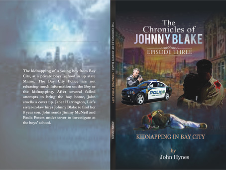 The Chronicles of Johnny Blake    Book Series