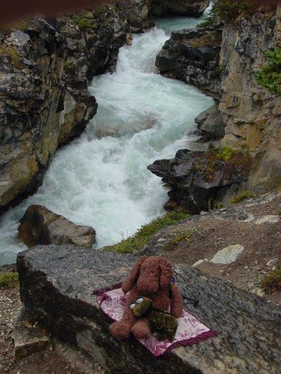 Bow Glacier Trail, Banff Park, AB - Sept. 2001