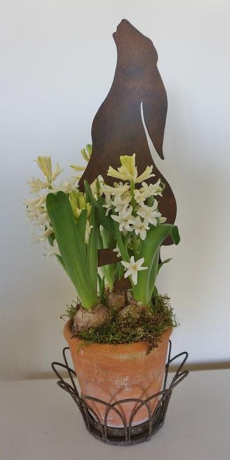 Hyacinth pot.jpg