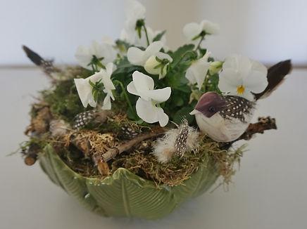Bird nest dish.jpg