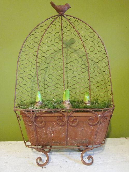 Rustic bird bulb planter